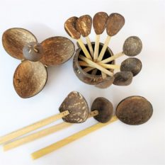 coconut shell craft